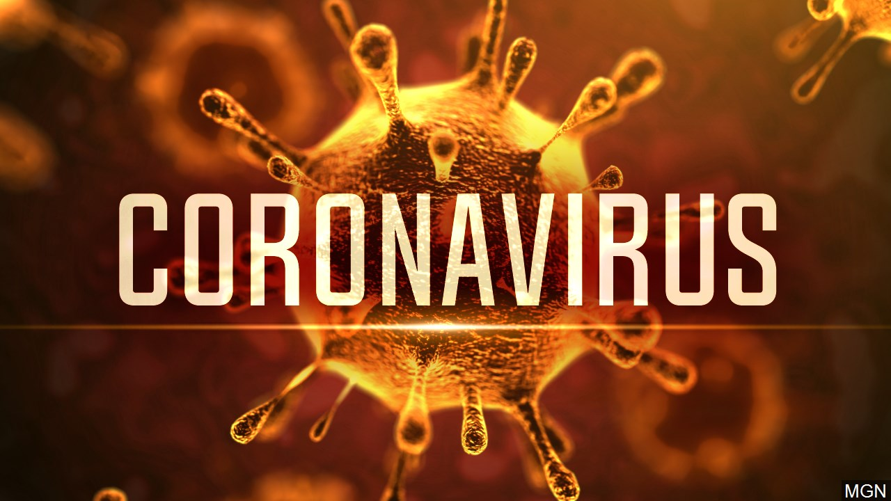 The bitter truth behind the coronavirus
