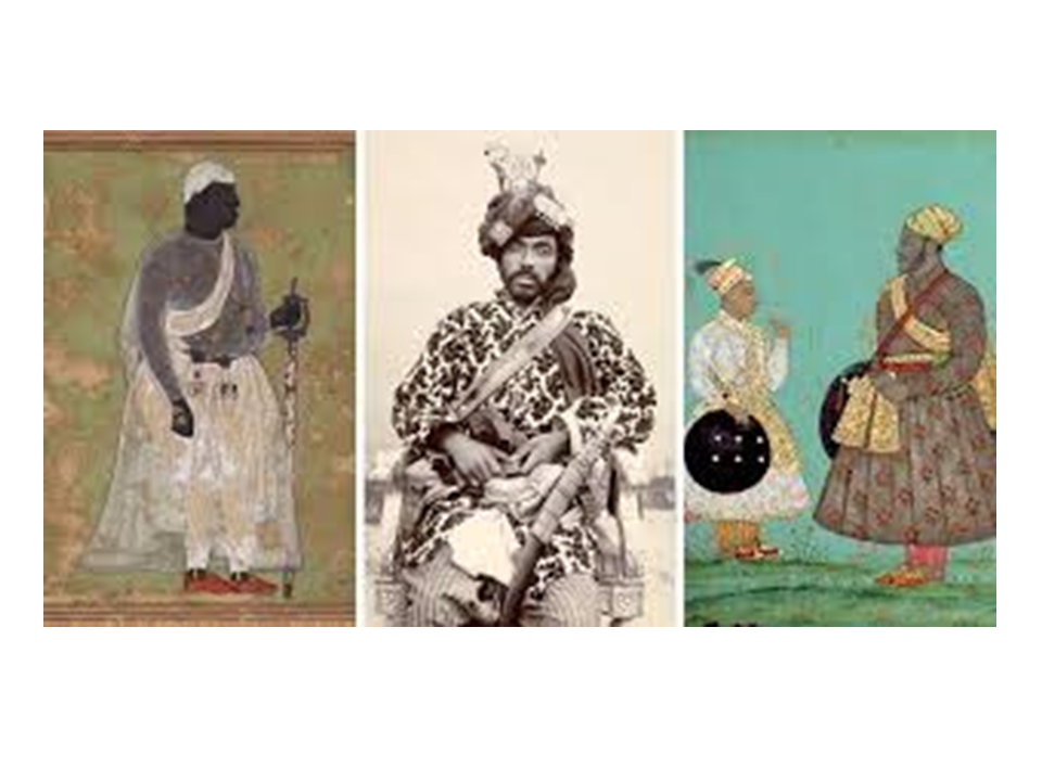 4 African Kings Who Ruled India That Have Been Erased From History